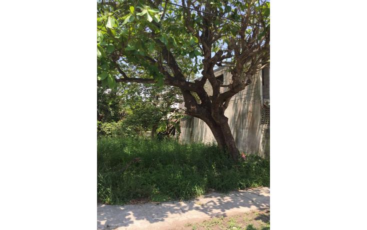 Foto de terreno habitacional en venta en  , benito ju?rez, ciudad madero, tamaulipas, 1124967 No. 02