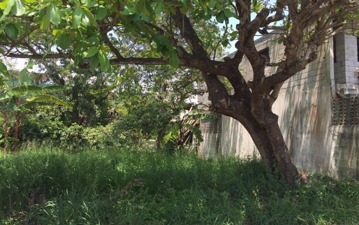 Foto de terreno habitacional en venta en  , benito ju?rez, ciudad madero, tamaulipas, 1124967 No. 03