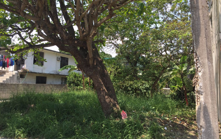 Foto de terreno habitacional en venta en  , benito ju?rez, ciudad madero, tamaulipas, 1124967 No. 04