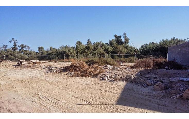 Foto de terreno habitacional en venta en  , benito ju?rez, la paz, baja california sur, 1291209 No. 01