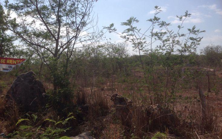 Foto de terreno habitacional en venta en, benito juárez nte, mérida, yucatán, 1664214 no 01