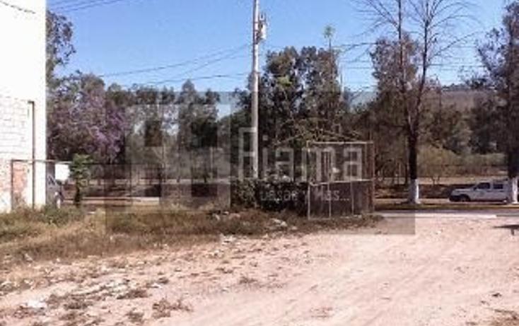 Foto de terreno habitacional en venta en  , benito juárez oriente, tepic, nayarit, 1357665 No. 08