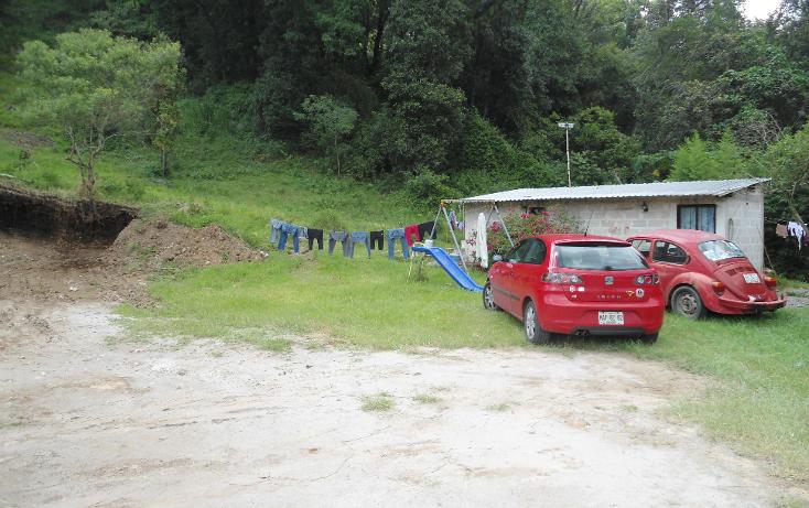 Foto de terreno comercial en renta en  , benito juárez, xalapa, veracruz de ignacio de la llave, 1297209 No. 02