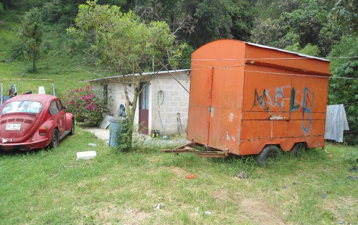 Foto de terreno comercial en renta en  , benito juárez, xalapa, veracruz de ignacio de la llave, 1297209 No. 07