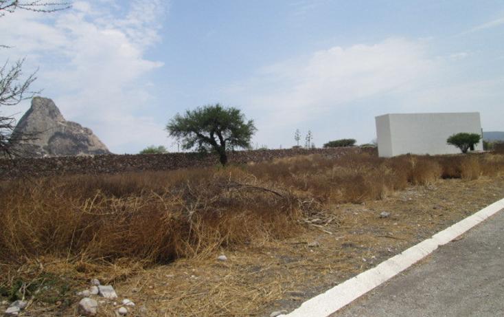 Foto de terreno habitacional en venta en  , bernal, ezequiel montes, quer?taro, 451469 No. 04