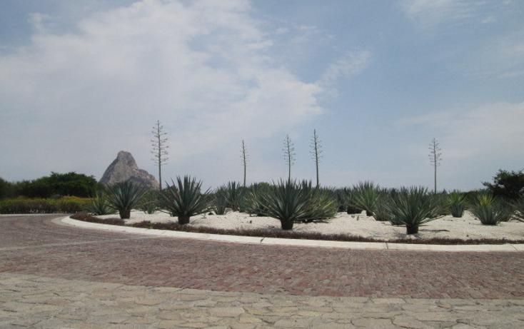 Foto de terreno habitacional en venta en  , bernal, ezequiel montes, quer?taro, 451469 No. 06