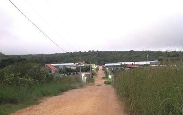 Foto de terreno habitacional en venta en el limón , berriozabal centro, berriozábal, chiapas, 1456817 No. 03