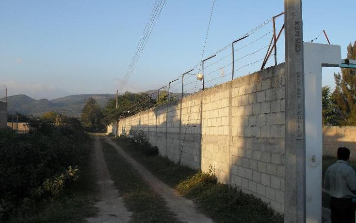 Foto de rancho en venta en quinta san jose , berriozabal centro, berriozábal, chiapas, 397590 No. 08