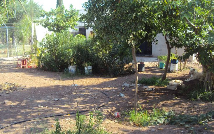 Foto de casa en venta en blas moreno y callejón flores magon sn, ricardo flores magón, ahome, sinaloa, 1709602 no 25