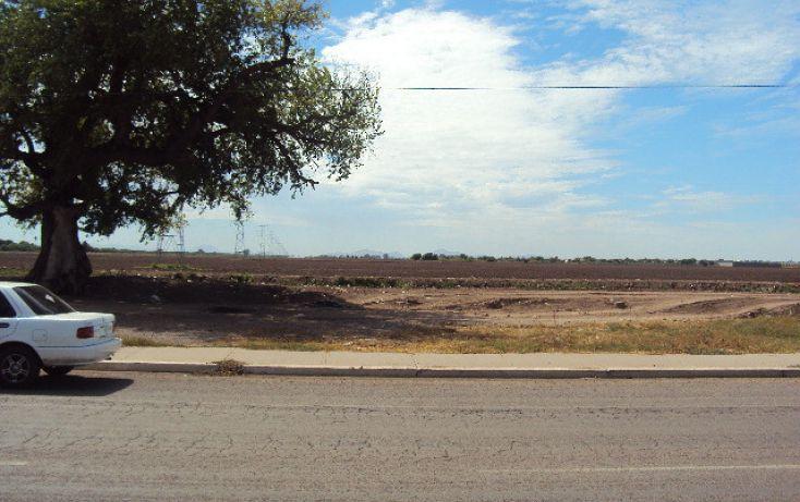 Foto de terreno habitacional en renta en blvd centenario y vial de ferrocarril sn, ricardo flores magón, ahome, sinaloa, 1709708 no 01