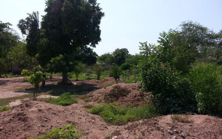 Foto de terreno habitacional en venta en blvd zacatecas poste b7, benito juárez, ahome, sinaloa, 1716984 no 05