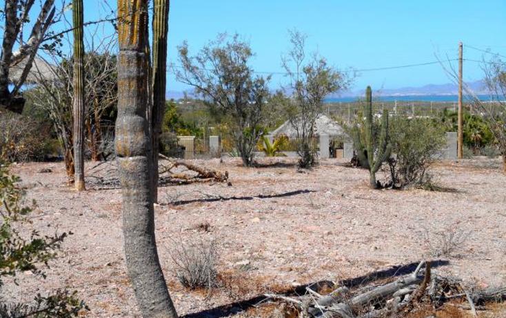 Foto de terreno habitacional en venta en  , boca del palmarito, la paz, baja california sur, 1466535 No. 07