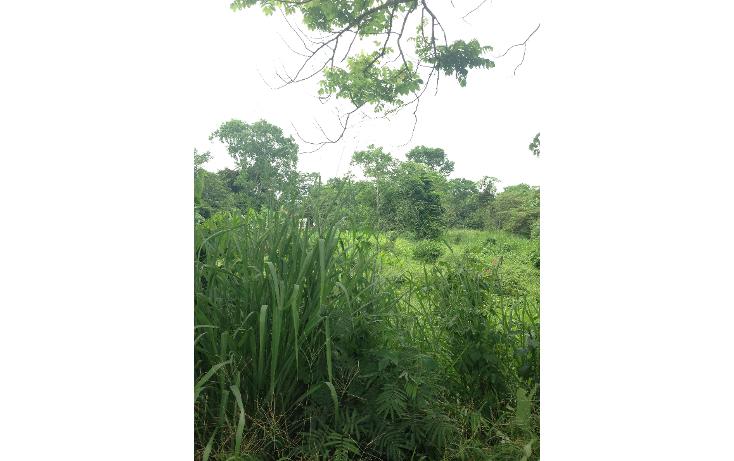 Foto de terreno comercial en venta en  , boquerón 1a sección (san pedro), centro, tabasco, 1120587 No. 02