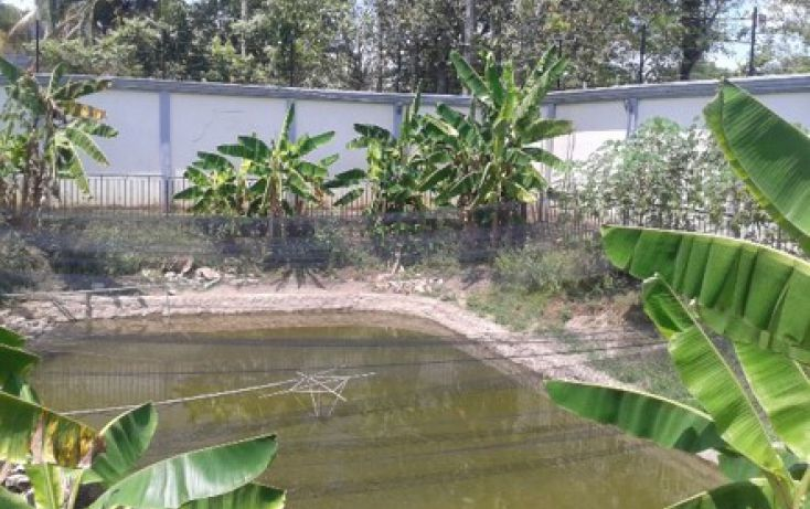 Foto de casa en venta en, boquerón 4a sección laguna nueva, centro, tabasco, 1229381 no 18