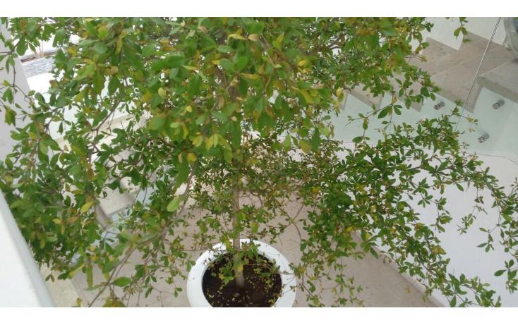 Foto de casa en venta en  , las cañadas, zapopan, jalisco, 639529 No. 43
