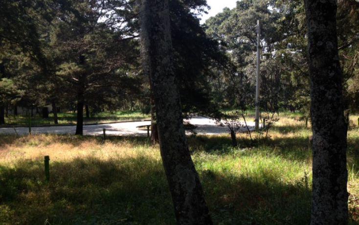 Foto de terreno habitacional en venta en, bosque de cuauhyocan, amozoc, puebla, 1896956 no 10