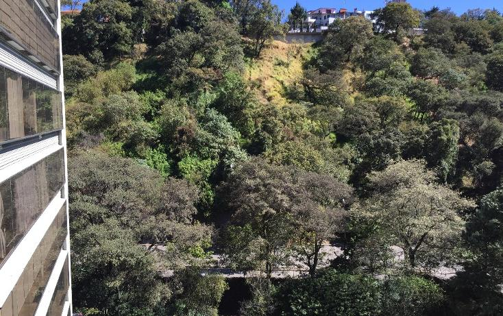 Foto de departamento en renta en  , bosque de las lomas, miguel hidalgo, distrito federal, 1628202 No. 27