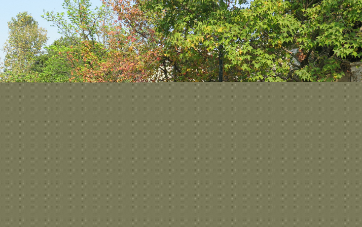 Foto de casa en venta en  , bosque de las lomas, miguel hidalgo, distrito federal, 1636170 No. 09