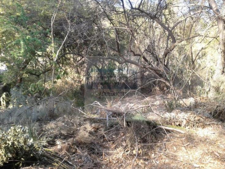 Foto de terreno habitacional en venta en  l20, las cañadas, zapopan, jalisco, 220771 No. 06
