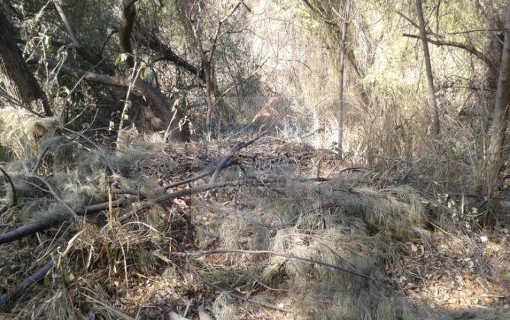 Foto de terreno habitacional en venta en bosque de mazamitla, las cañadas, zapopan, jalisco, 220771 no 03