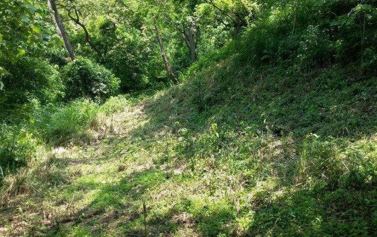 Foto de terreno habitacional en venta en bosque de tapalpa 1, bosques de san isidro, zapopan, jalisco, 1725474 no 05