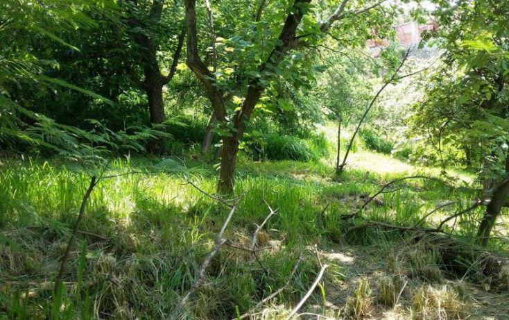 Foto de terreno habitacional en venta en bosque de tapalpa 1, bosques de san isidro, zapopan, jalisco, 1725474 no 06