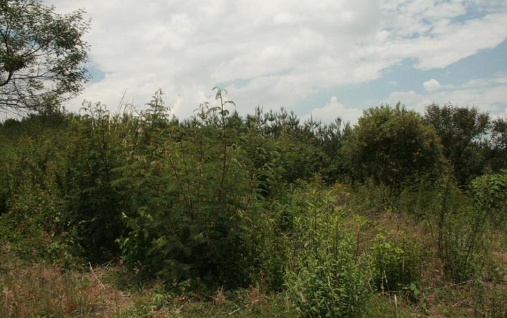 Foto de terreno habitacional en venta en  , bosque monarca, morelia, michoac?n de ocampo, 1102157 No. 03