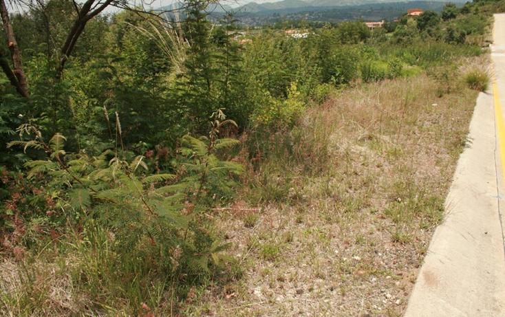 Foto de terreno habitacional en venta en  , bosque monarca, morelia, michoac?n de ocampo, 1102157 No. 04