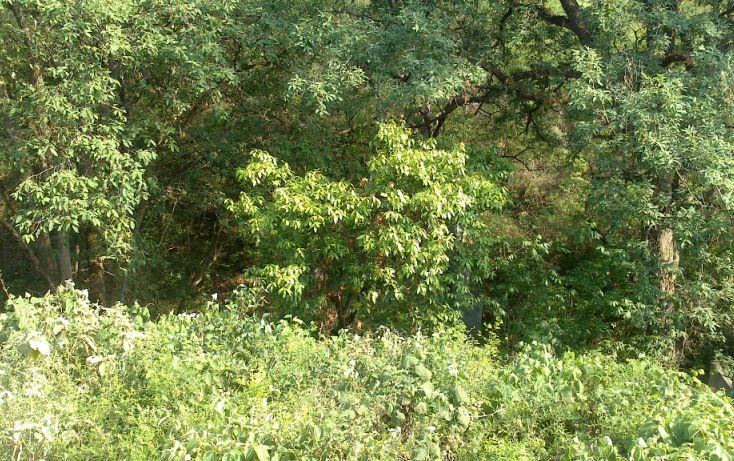 Foto de terreno habitacional en venta en, bosque residencial, santiago, nuevo león, 1296957 no 04
