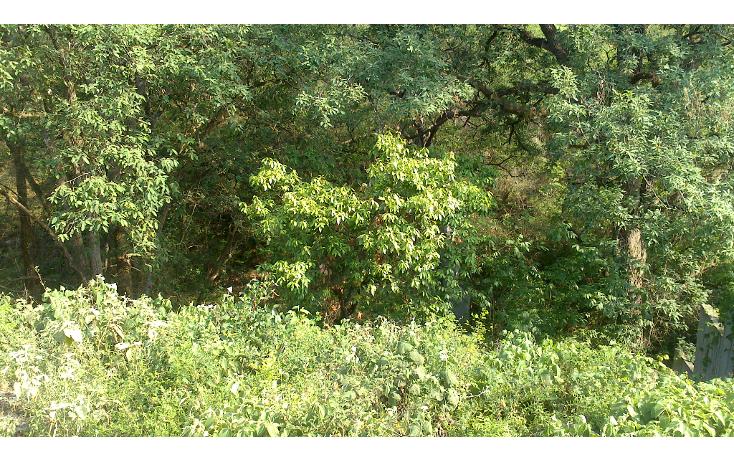 Foto de terreno habitacional en venta en  , bosque residencial, santiago, nuevo león, 1296957 No. 04