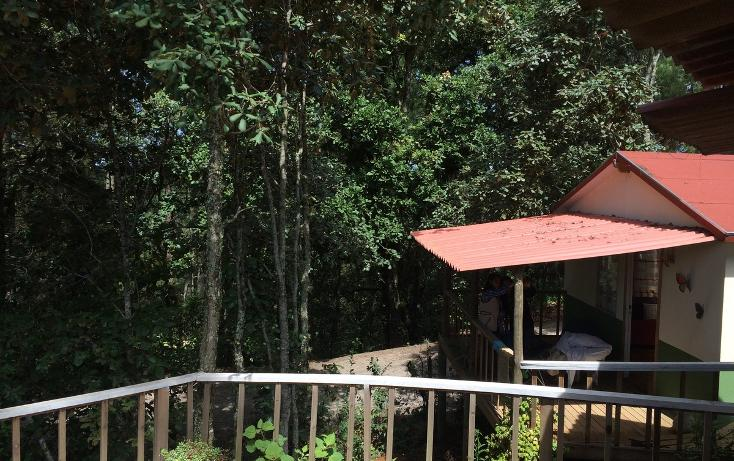 Foto de casa en renta en  , bosques de huitepec, san cristóbal de las casas, chiapas, 1489635 No. 01
