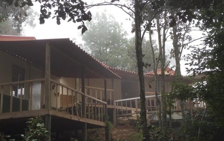 Foto de casa en renta en, bosques de huitepec, san cristóbal de las casas, chiapas, 1489635 no 02