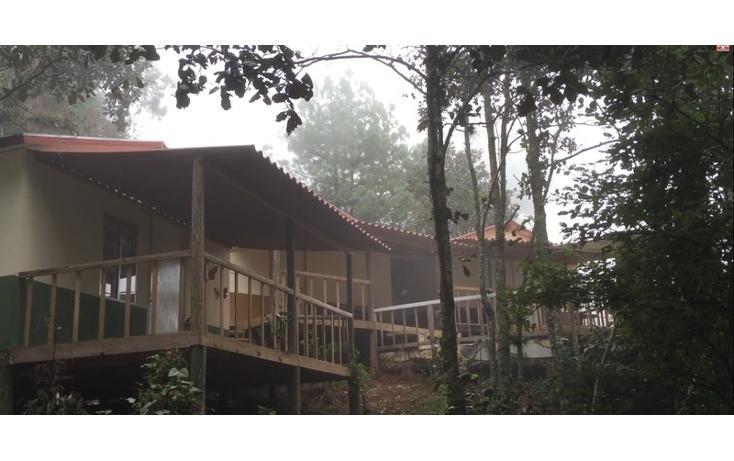 Foto de casa en renta en  , bosques de huitepec, san cristóbal de las casas, chiapas, 1489635 No. 02