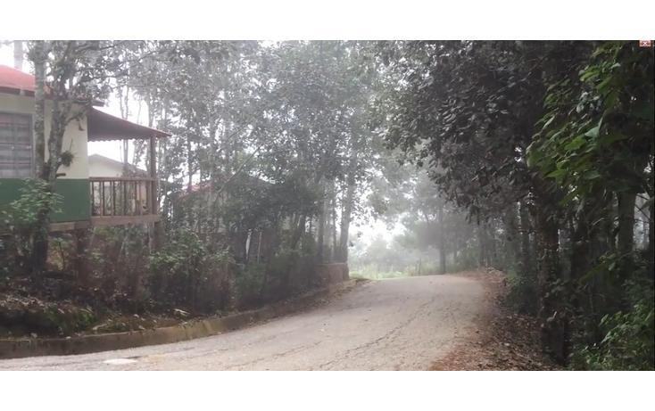 Foto de casa en renta en  , bosques de huitepec, san cristóbal de las casas, chiapas, 1489635 No. 03