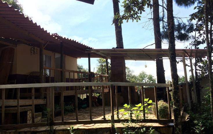 Foto de casa en renta en  , bosques de huitepec, san cristóbal de las casas, chiapas, 1489635 No. 05