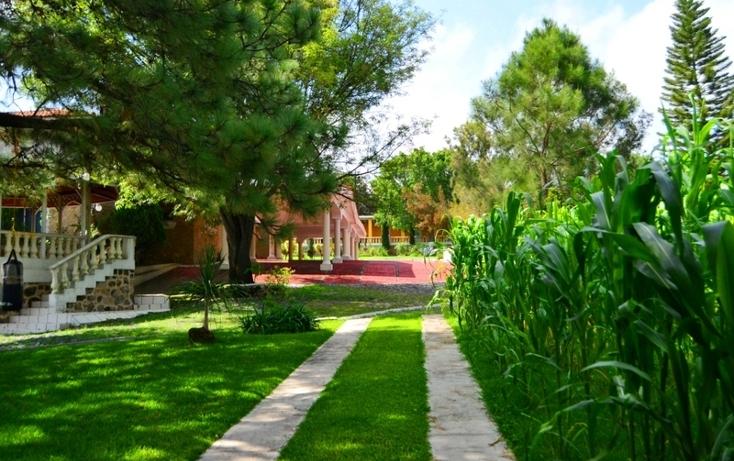 Foto de rancho en venta en  , bosques de la primavera, zapopan, jalisco, 535817 No. 04