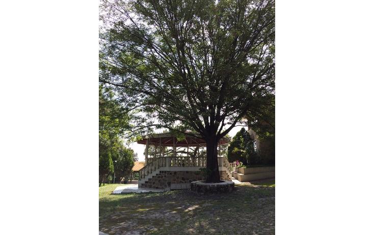 Foto de rancho en venta en  , bosques de la primavera, zapopan, jalisco, 535817 No. 36