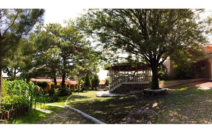 Foto de rancho en venta en  , bosques de la primavera, zapopan, jalisco, 535817 No. 39
