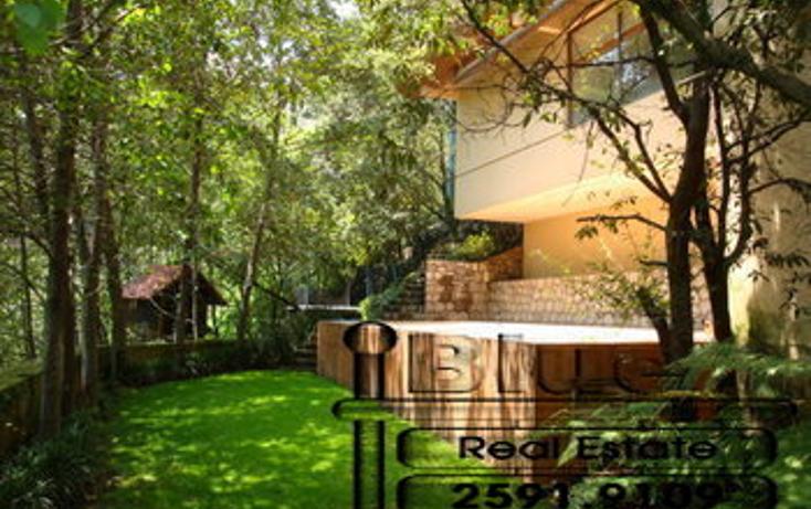 Foto de departamento en renta en  , bosques de las lomas, cuajimalpa de morelos, distrito federal, 1268489 No. 01