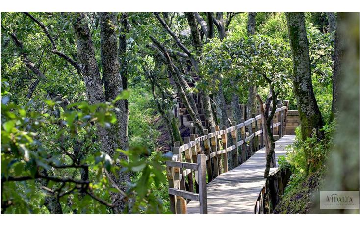 Foto de departamento en renta en  , bosques de las lomas, cuajimalpa de morelos, distrito federal, 1761834 No. 08
