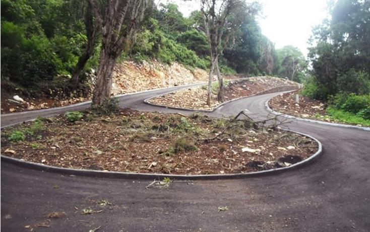 Foto de terreno habitacional en venta en  , bosques de las lomas, xalapa, veracruz de ignacio de la llave, 1055553 No. 01