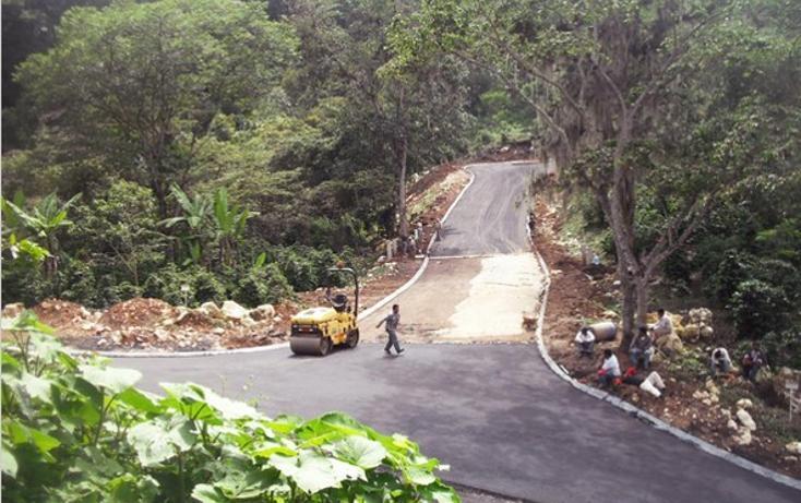 Foto de terreno habitacional en venta en  , bosques de las lomas, xalapa, veracruz de ignacio de la llave, 1055553 No. 03