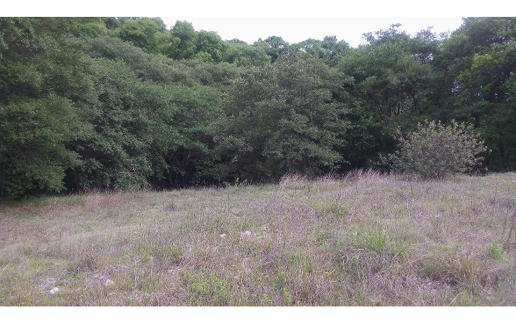 Foto de terreno habitacional en venta en  , bosques de manzanilla, puebla, puebla, 1973872 No. 04