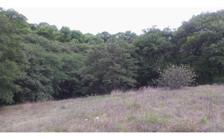 Foto de terreno habitacional en venta en  , bosques de manzanilla, puebla, puebla, 1973872 No. 05