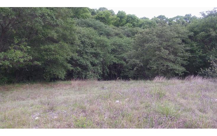 Foto de terreno habitacional en venta en  , bosques de manzanilla, puebla, puebla, 1973872 No. 06