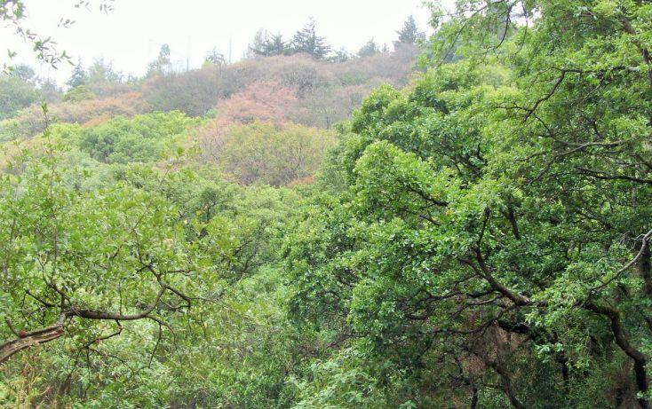 Foto de terreno habitacional en venta en, bosques de tarango, álvaro obregón, df, 1965477 no 06