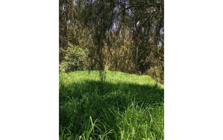 Foto de terreno habitacional en venta en  , bosques del lago, cuautitlán izcalli, méxico, 1088803 No. 02