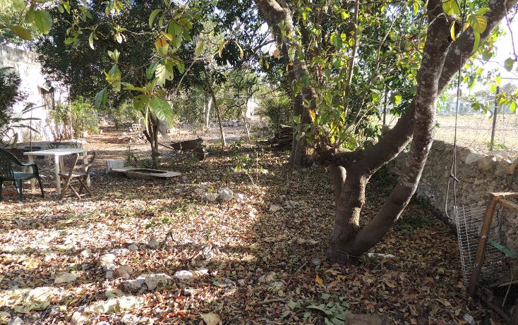 Foto de terreno habitacional en venta en  , boulevares de oriente, mérida, yucatán, 1446409 No. 07