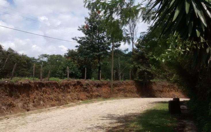 Foto de terreno habitacional en venta en, briones, coatepec, veracruz, 1411013 no 09