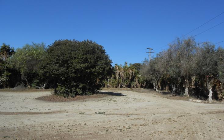 Foto de casa en venta en  , brisa del mar, ensenada, baja california, 1609045 No. 12